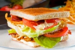 ID-100204903 (sandwich)