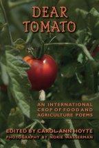 Dear Tomato cover